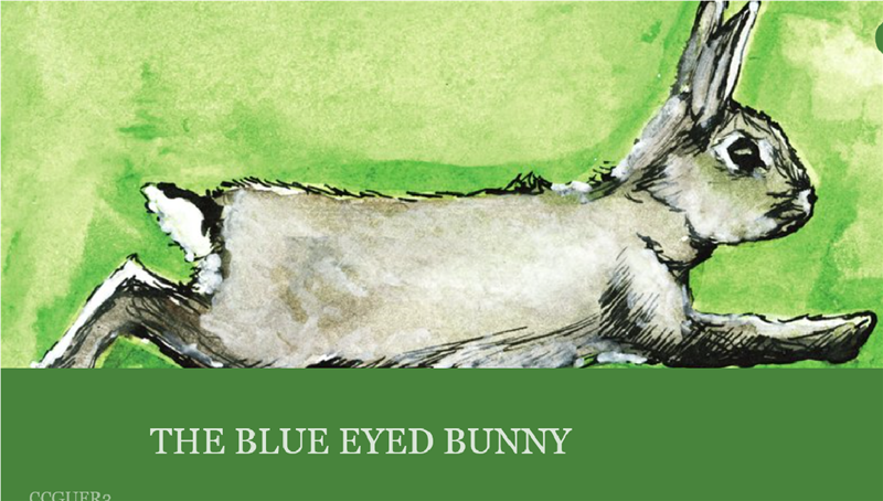 The Blue Eyed Bunny.png
